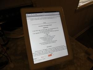 iPadmount