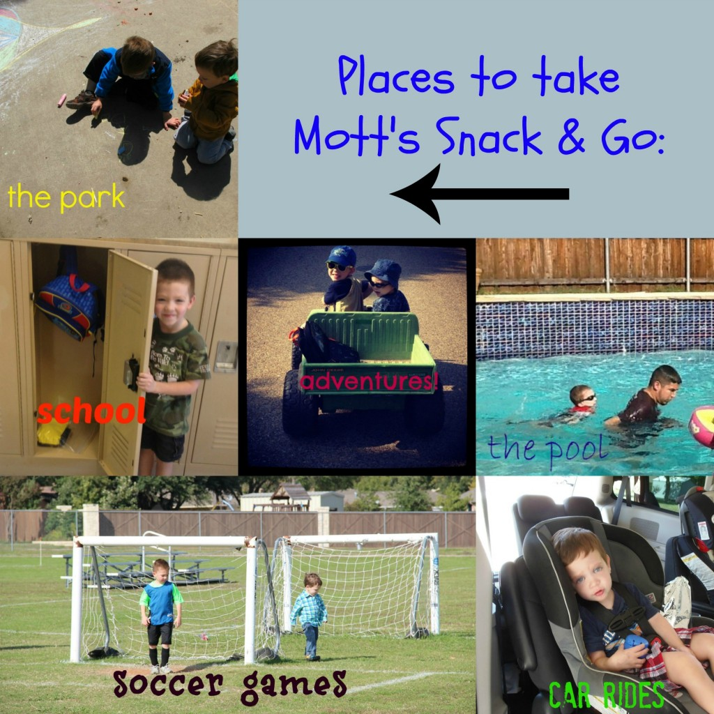motts snack and go
