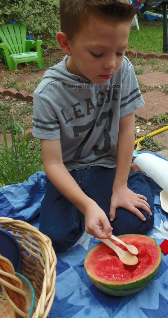 ecofriendly picnic