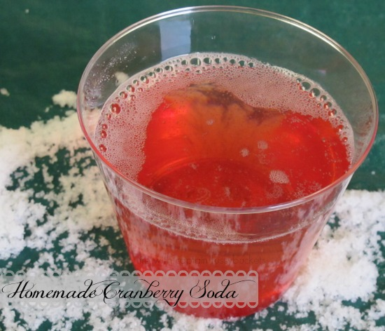 homemade cranberry soda