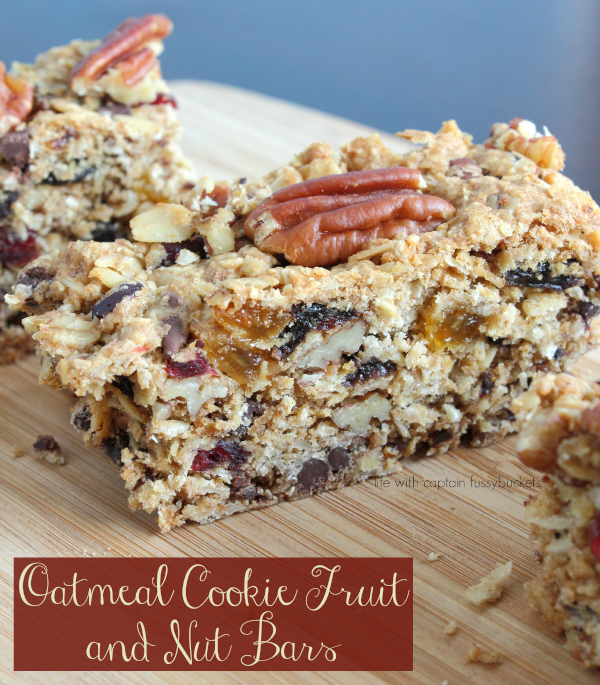Oatmeal Cookie Fruit and Nut Bars