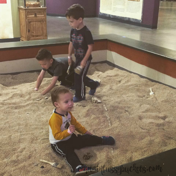 sci-tech-discovery-center-dino-dig