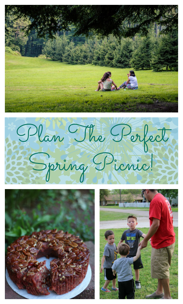 spring picnic collin street bakery AD