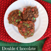 Double Chocolate Oatmeal Cookie Recipe and Picture Ornament Craft for Kids