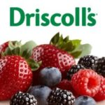 Driscoll's Berries Sweepstakes {OVER}
