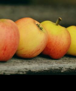 Apple Love - Apple Recipes