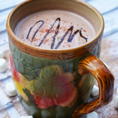 Spicy Hot Cocoa Recipe - Perfect for Cold Days!