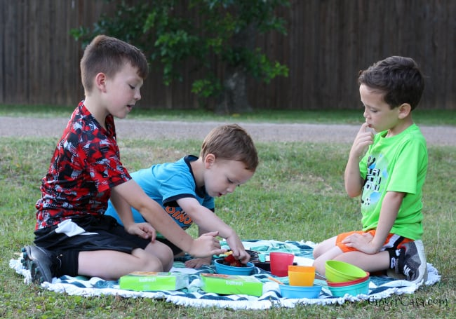 kidfresh picnic