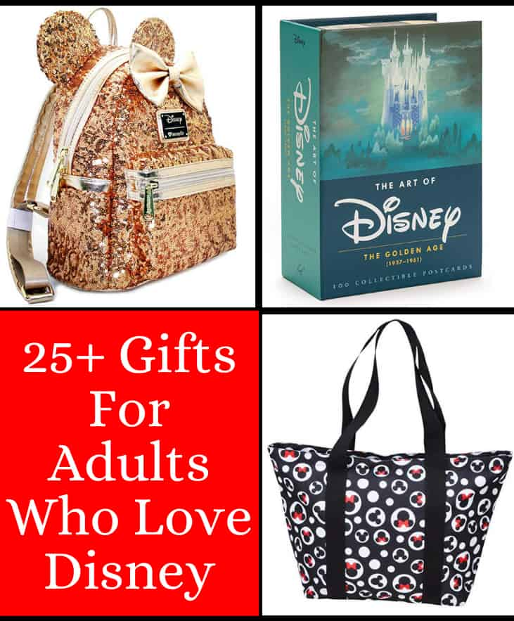 25+ Gifts for Adults who Love Disney!